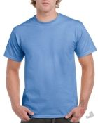 Color 109 (carolina blue)