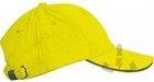 Color yellow-slategrey (Yellow - Slate grey)
