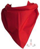 Pañuelos RTN Triangular algodón 80x57 PF10