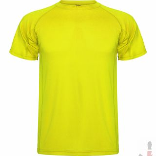 Color 221 (Yellow Fluor)