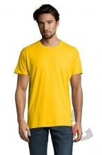 Color 301 (Yellow)