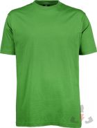 Color 509 (Spring Green)